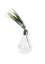 Vaso Lâmpada - Pequeno - 13x8x8cm - Coleção Mirabile Essential
